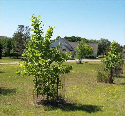 834 Saddleridge Dr, Wimberley, TX - USA (photo 3)