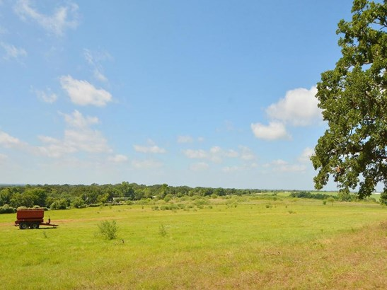 544 Fm 2336, Bastrop, TX - USA (photo 4)
