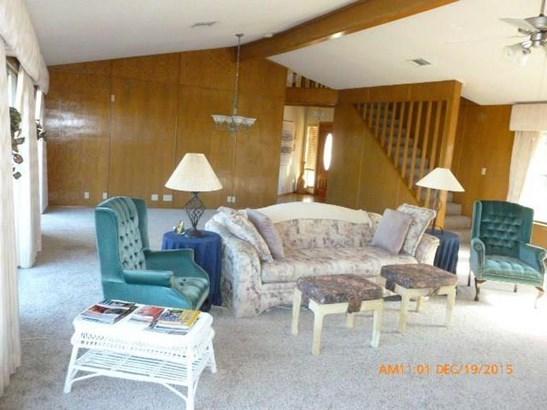 917 Electra, Lakeway, TX - USA (photo 5)