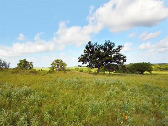 544 Fm 2336, Bastrop, TX - USA (photo 5)