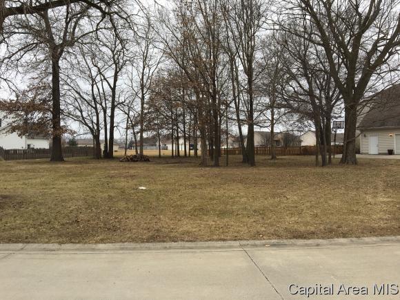 Residential - Auburn, IL (photo 2)
