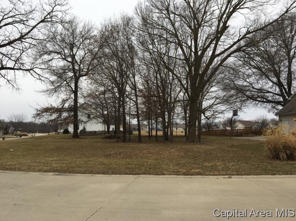 Residential - Auburn, IL (photo 3)