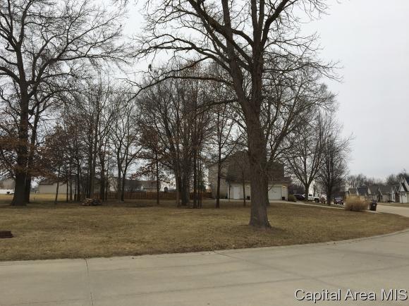 Residential - Auburn, IL (photo 4)