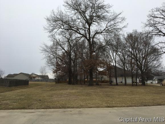 Residential - Auburn, IL (photo 5)