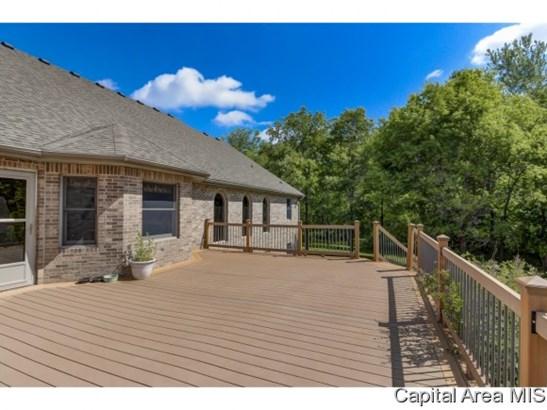 Ranch, Residential,Single Family Residence - Auburn, IL (photo 2)