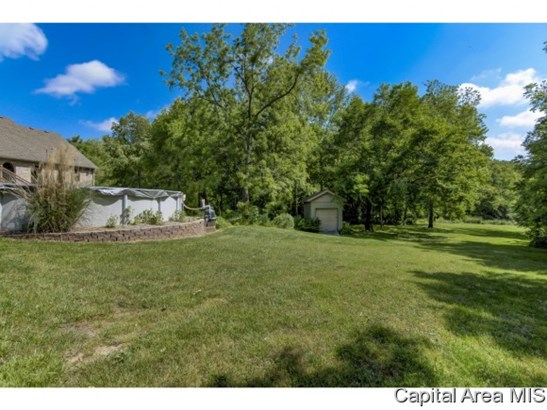 Ranch, Residential,Single Family Residence - Auburn, IL (photo 5)