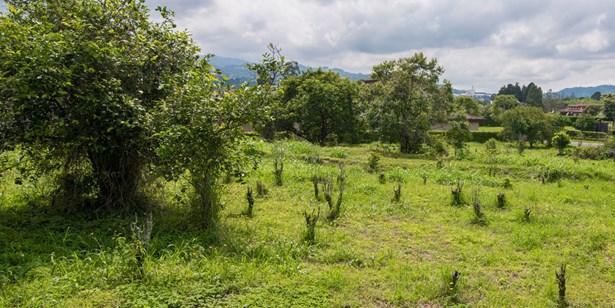 Monterán, Granadilla - CRI (photo 3)