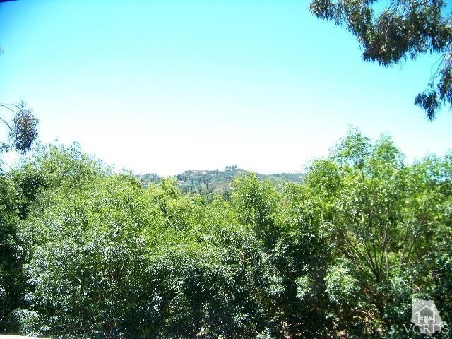 Carlisle Road, Westlake Village, CA - USA (photo 1)