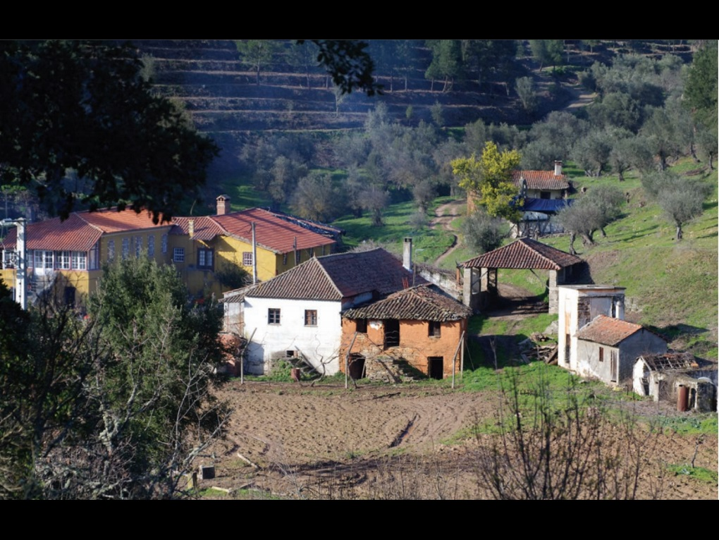 Mirandela - PRT (photo 4)