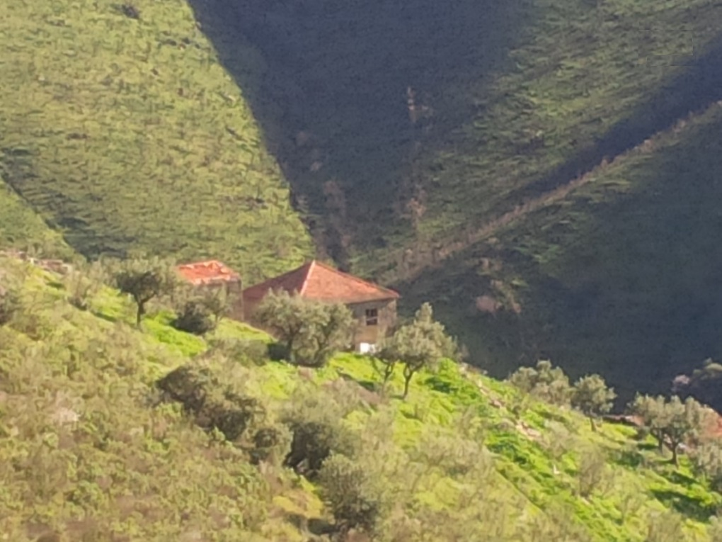 Torre De Moncorvo - PRT (photo 3)
