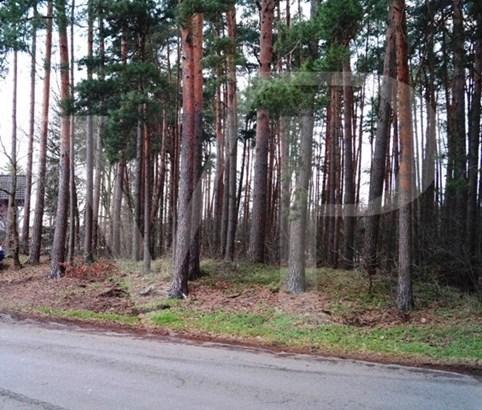 Wietze / Hornbostel - DEU (photo 4)