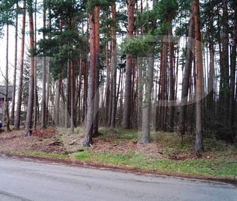 Wietze / Hornbostel - DEU (photo 5)