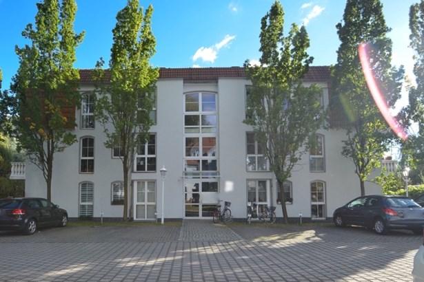 Potsdam / Eiche - DEU (photo 2)
