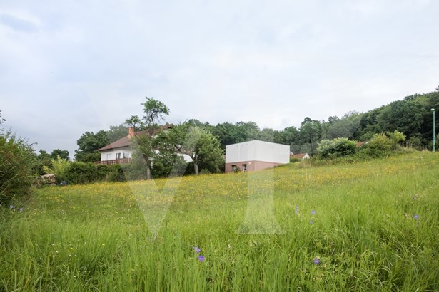 Wertheim-grünenwört - DEU (photo 1)
