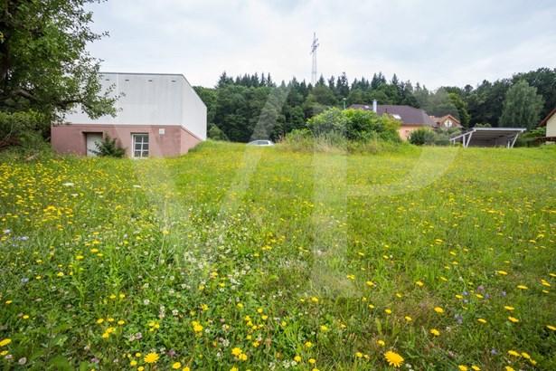 Wertheim-grünenwört - DEU (photo 2)