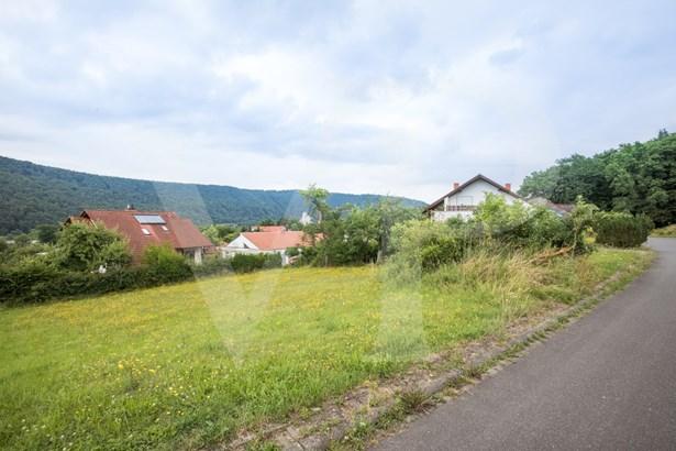 Wertheim-grünenwört - DEU (photo 3)