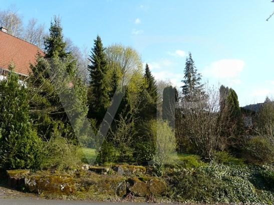 Buchen-hettigenbeuern - DEU (photo 5)