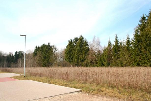 Schneverdingen / Wintermoor - DEU (photo 3)