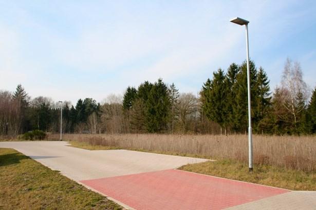 Schneverdingen / Wintermoor - DEU (photo 5)