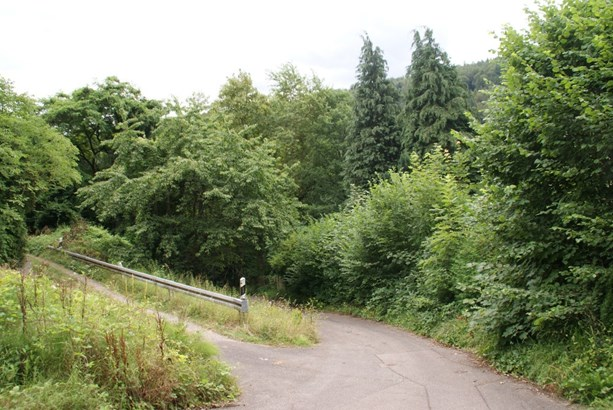 Birkenfeld - DEU (photo 2)