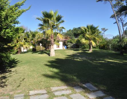 Pinares - URY (photo 2)