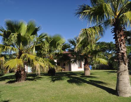 Pinares - URY (photo 3)