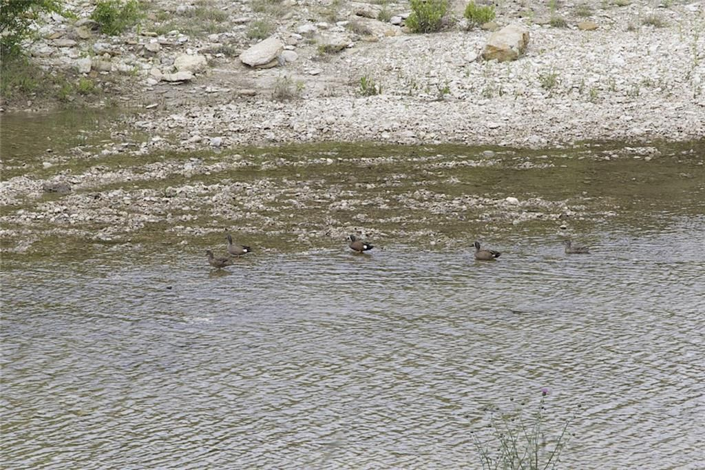 12403 E Rocky Creek Road Lt 5r1, Crowley, TX - USA (photo 5)
