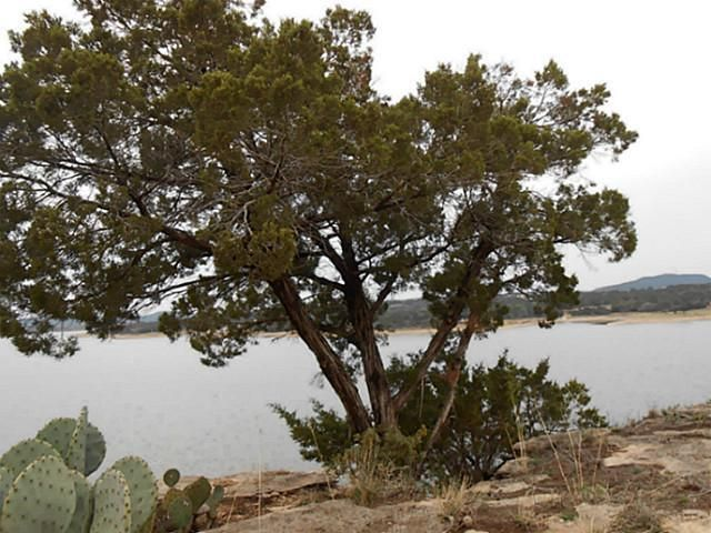 6013 Hells Gate Loop, Possum Kingdom Lake, TX - USA (photo 4)