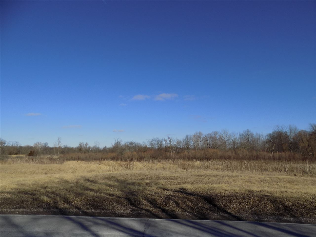 Residential Land - Corunna, IN (photo 2)