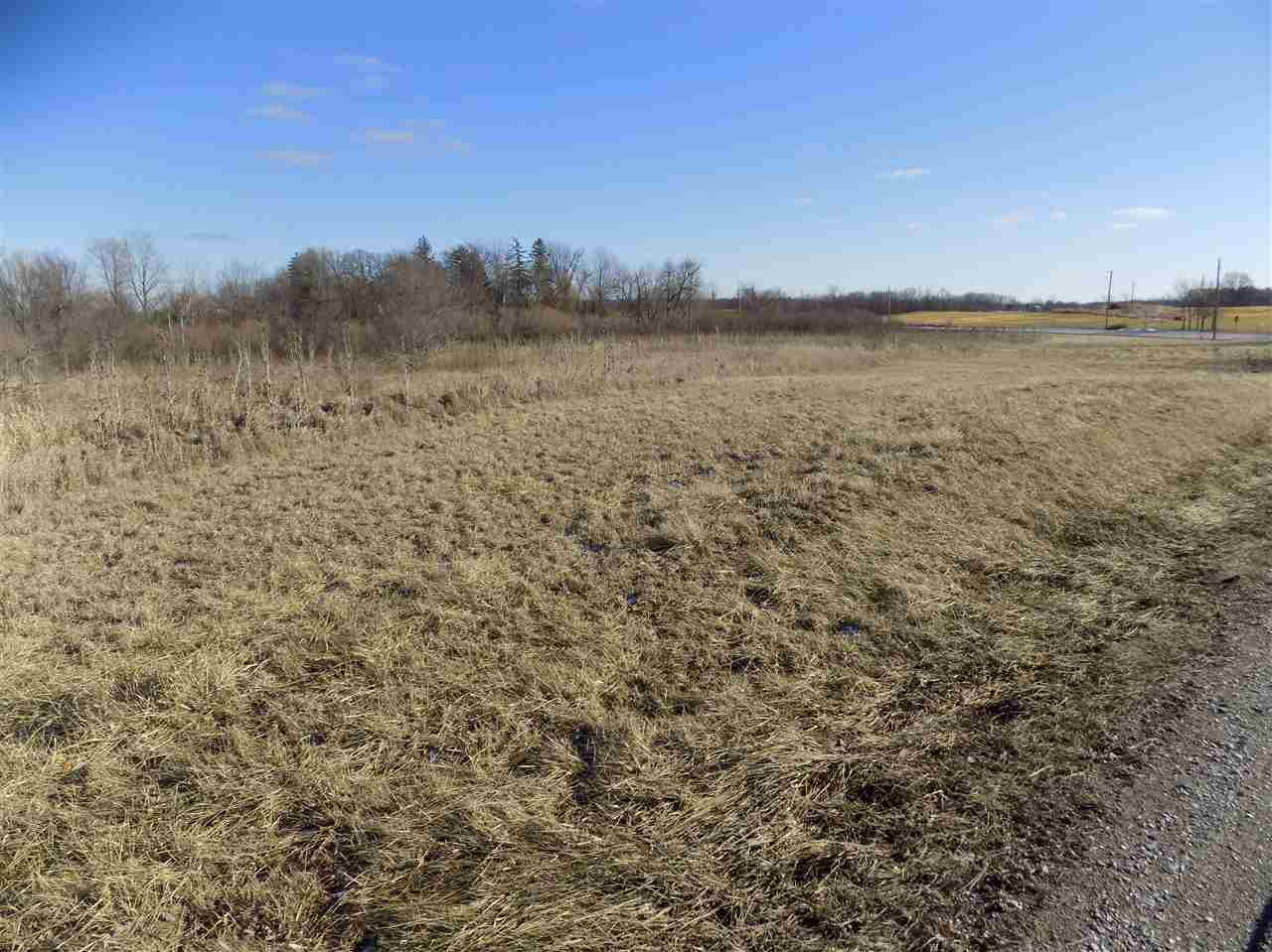 Residential Land - Corunna, IN (photo 4)