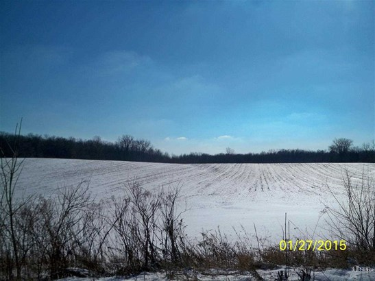 Agricultural Land - Huntertown, IN (photo 4)