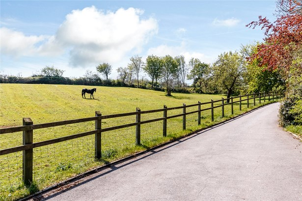 Nether Stowey, Bridgwater - GBR (photo 3)