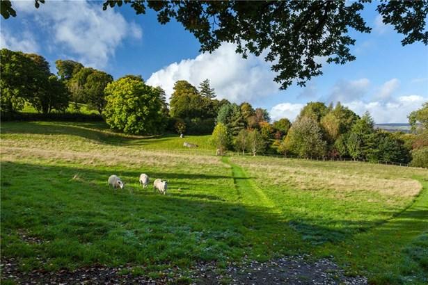 Chagford, Newton Abbot - GBR (photo 4)