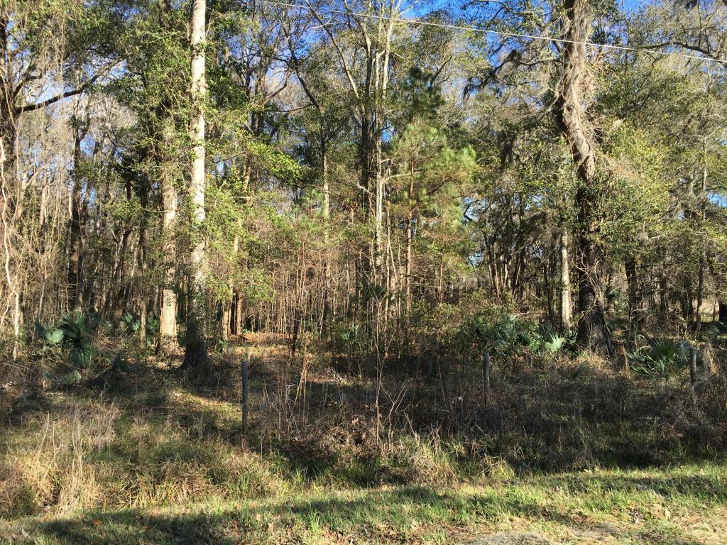 Resident S/D Lot - Hardeeville, SC (photo 1)