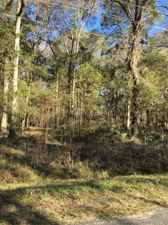 Resident S/D Lot - Hardeeville, SC (photo 2)