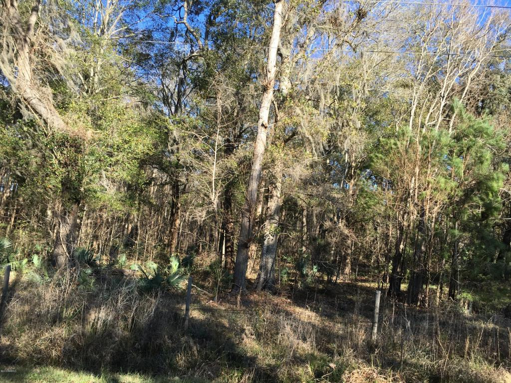 Resident S/D Lot - Hardeeville, SC (photo 3)