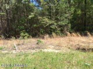 Acreage/Farm Plantation - Hardeeville, SC (photo 1)