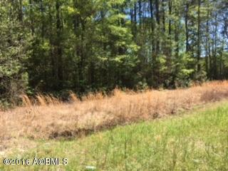 Acreage/Farm Plantation - Hardeeville, SC (photo 2)