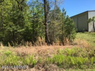 Acreage/Farm Plantation - Hardeeville, SC (photo 3)