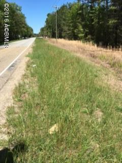 Acreage/Farm Plantation - Hardeeville, SC (photo 5)