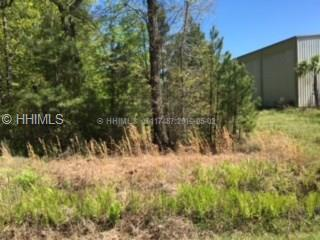 Land/Lots - Hardeeville, SC (photo 3)
