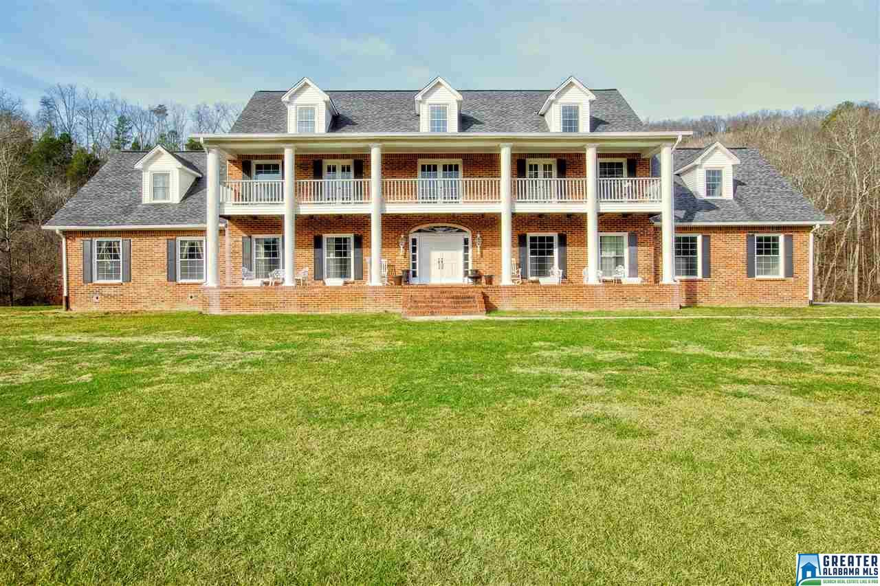 934 Fred Walker Rd, Oneonta, AL - USA (photo 1)