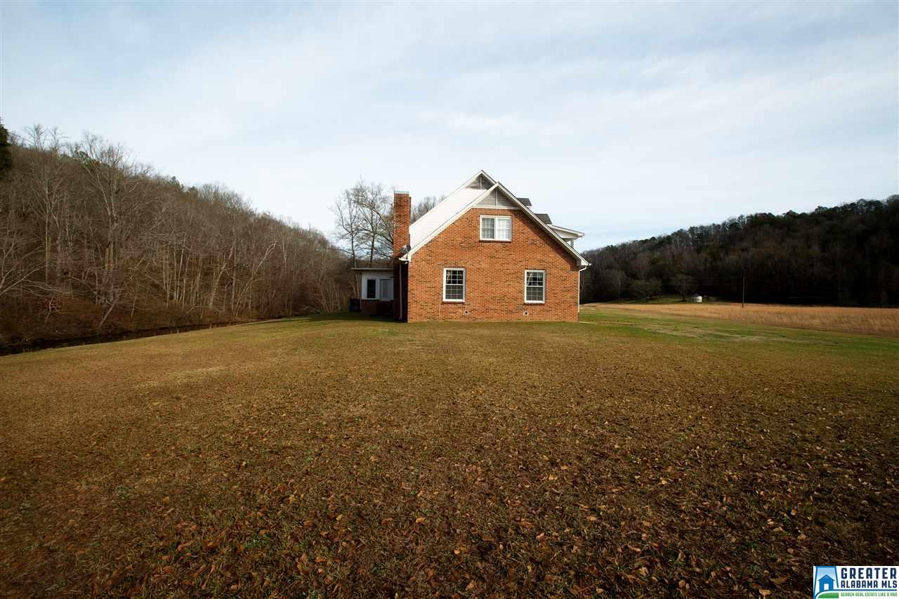 934 Fred Walker Rd, Oneonta, AL - USA (photo 4)
