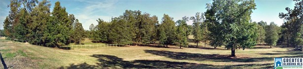 102 Shaw Ln 1, Wilsonville, AL - USA (photo 3)