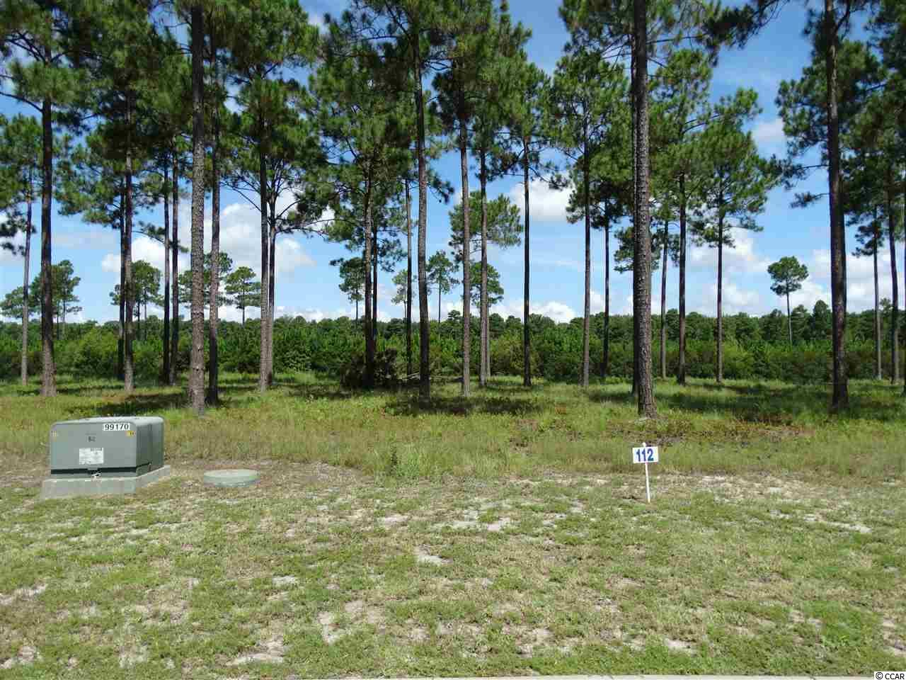 RESIDENTIAL LOT - Myrtle Beach, SC (photo 3)