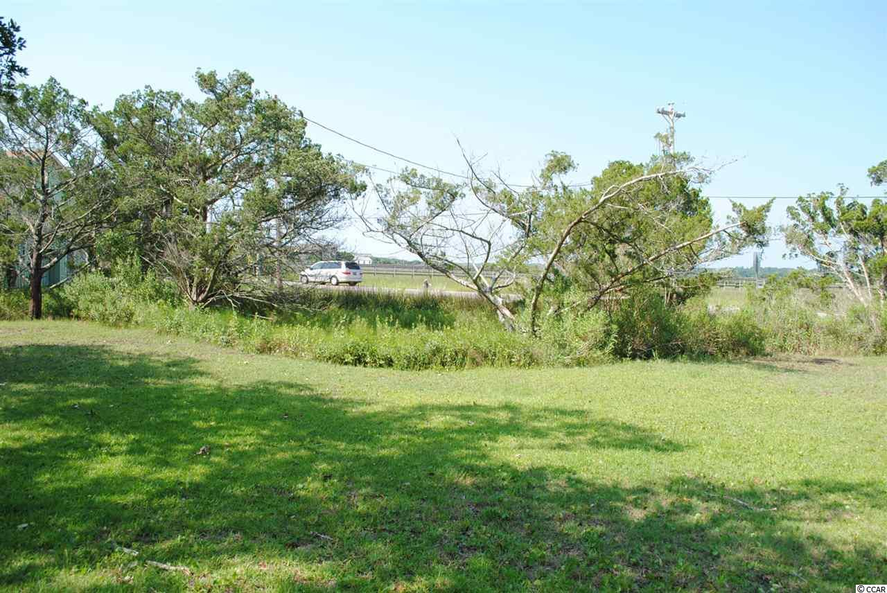 RESIDENTIAL LOT - Pawleys Island, SC (photo 4)