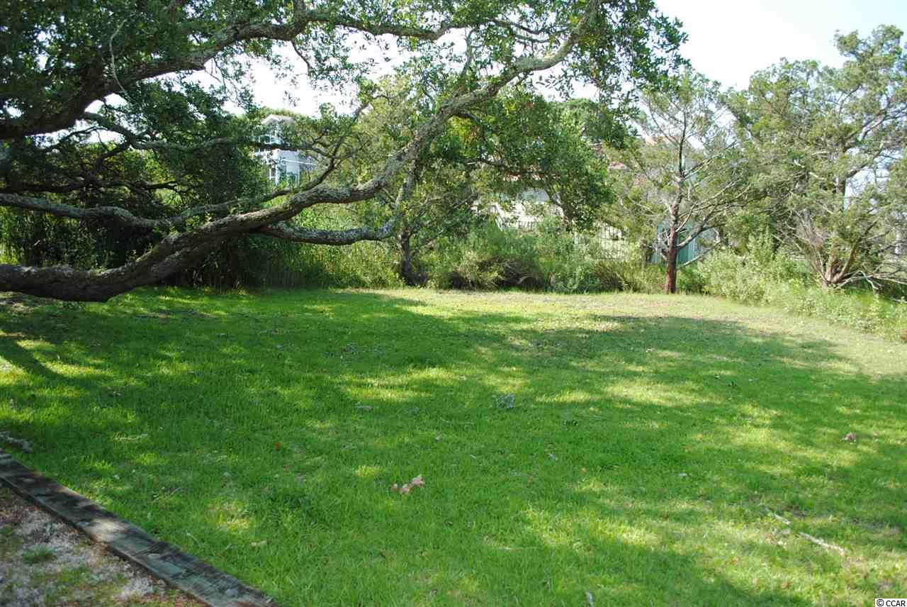 RESIDENTIAL LOT - Pawleys Island, SC (photo 5)