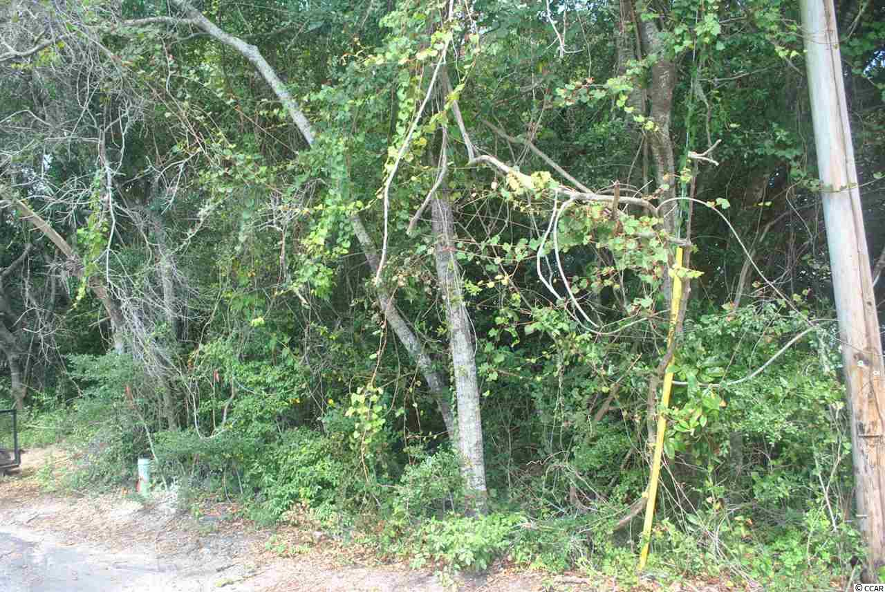 RESIDENTIAL LOT - North Myrtle Beach, SC (photo 3)