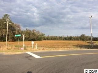 FARM - Loris, SC (photo 4)