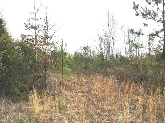 Residential Lot - Catawba, SC (photo 1)